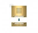 TMG-4/2 AKZENTE входная панель - PVD покрытие